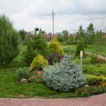 Озеленение частного участка